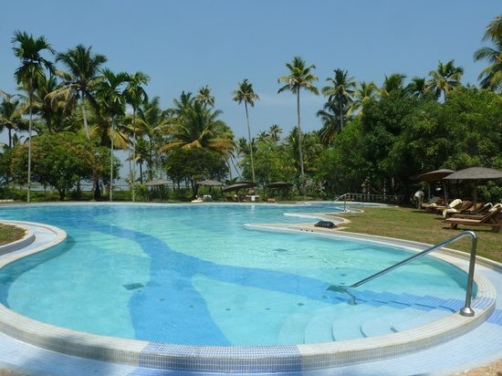 Coconut Lagoon:                   pool