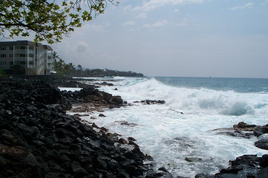 Royal Kona Resort:                   Looking south on the beach