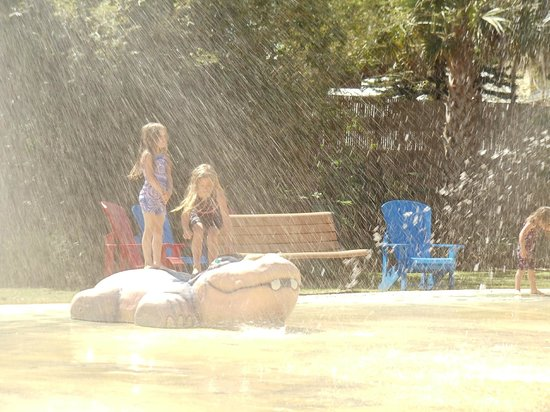 Splash Pad Picture Of Central Florida Zoo Botanical Gardens Sanford Tripadvisor