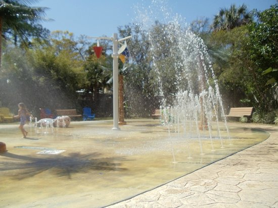 Splash Pad Picture Of Central Florida Zoo Botanical