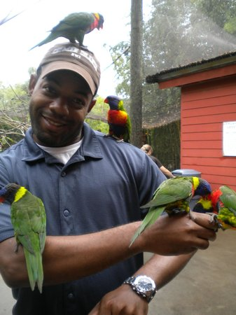 Riverbanks Zoo and Botanical Garden: Once you enter the cage,the birds will be all over you
