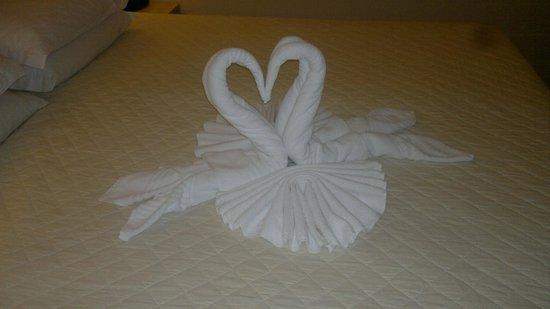 """Taroba Hotel: Sempre ao retornamos ao nosso quarto o serviço de arrumação nos deixava um surpresa """"um mimo""""..."""