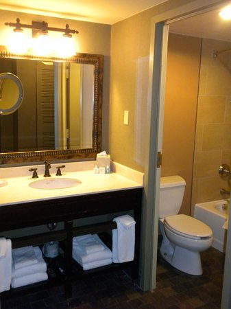 Lansdowne Resort and Spa:                   Bathroom--Room 318