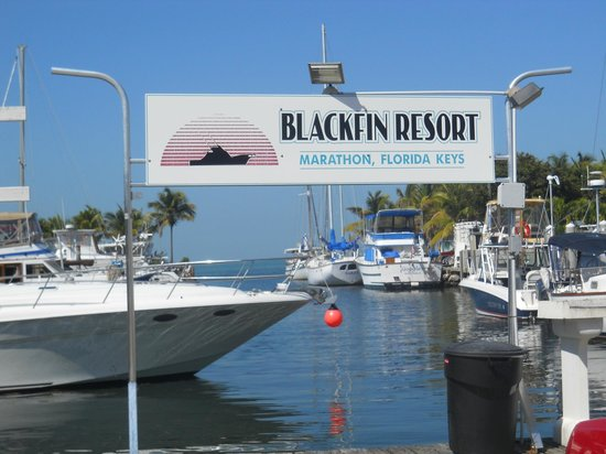 Blackfin Resort and Marina: Lovely marina