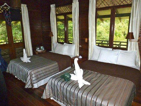Tortuga Lodge & Gardens:                   Tortuga Lodge Room