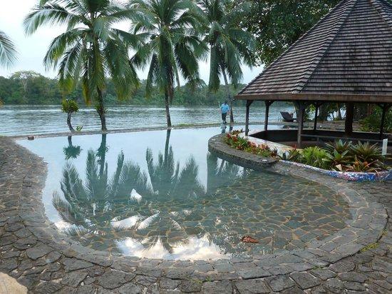 Tortuga Lodge & Gardens:                   Tortuga Lodge Pool