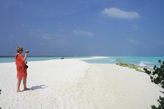 Kuramathi Island Resort: sand bank