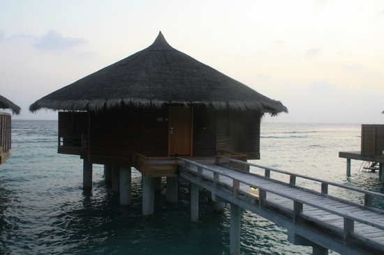 Kuramathi Island Resort : water villa with jacuzzi