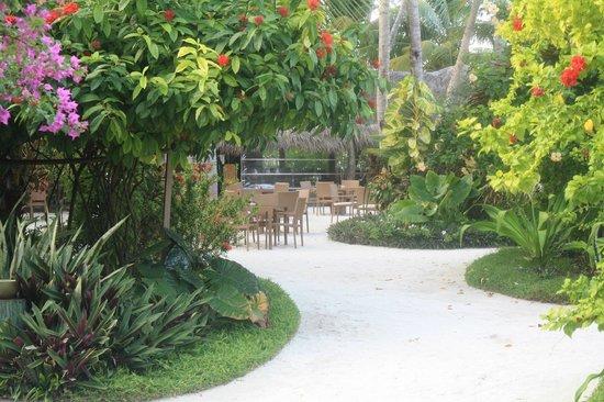 Kuramathi Island Resort: italian restaurant