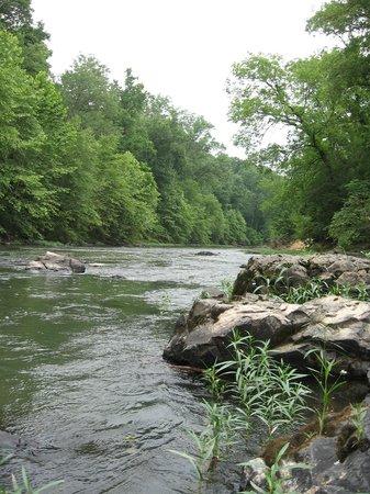 Rapidan River Kayak Company: Views along the guided tour