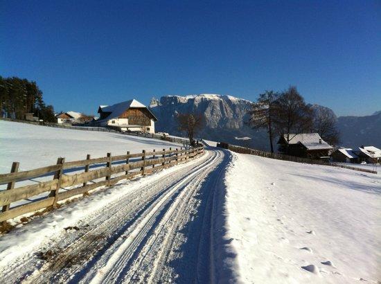 Gasthof Bad Siess:                   Spaziergang in nächster Umgebung