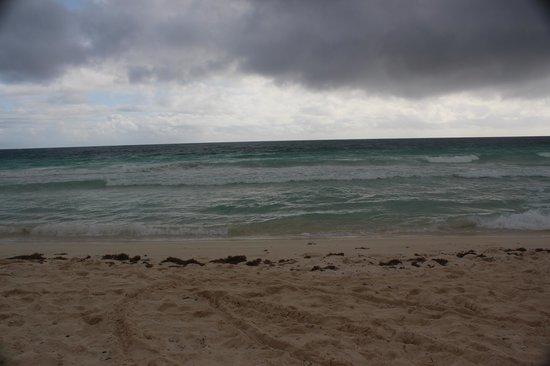 Cesiak Centro Ecologico Sian Ka'an:                                                                         View of the beach
