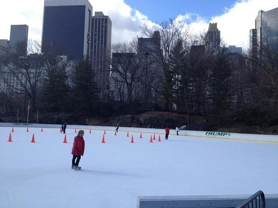Trump Rink in Central Park:                   on Ice
