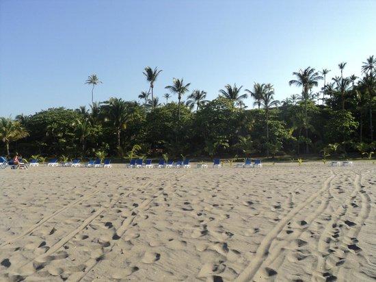 بارسيلو مونتليمار بيتش هوتل أول إنكلوسيف:                   Beach                 