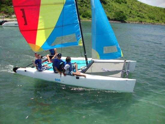 Turtle Beach, Saint-Christophe : Our adventures during summer sea escape