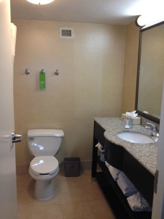 Hampton Inn Atlanta-Georgia Tech-Downtown:                   Bathroom