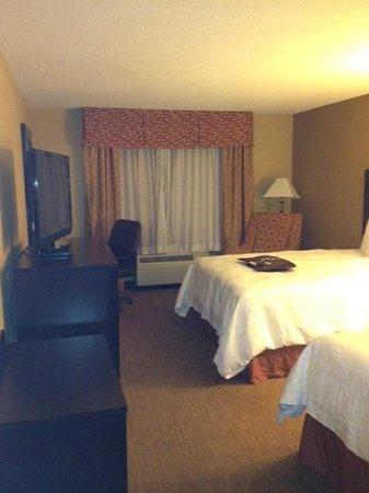 Hampton Inn Atlanta-Georgia Tech-Downtown:                   the room