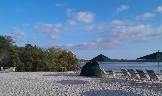 Villas at Disney's Wilderness Lodge:                   Beach area with nice white sand