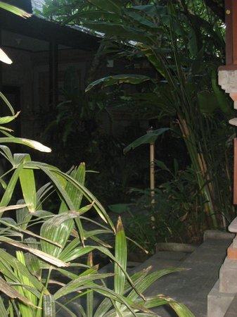 كوتا سيفيو بوتيك ريزورت آند سبا:                   Garden looking from our room                 