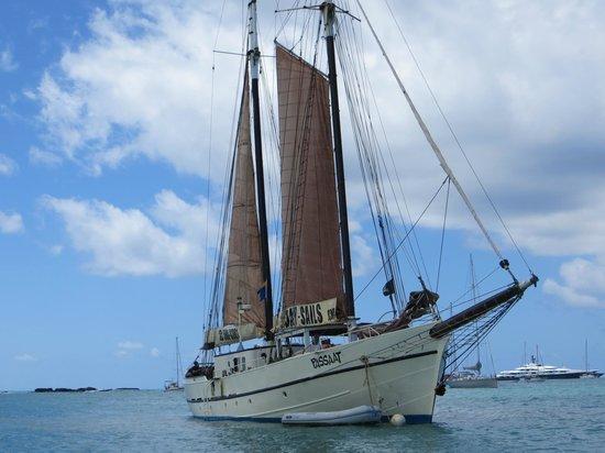 Passaat Classic Schooner:                   The 100 ft 100 year old vessel.