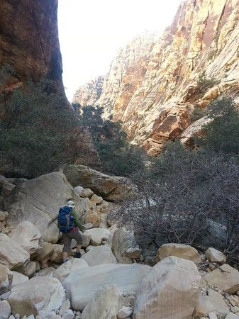 Ice  Box Canyon : Rocky Trail