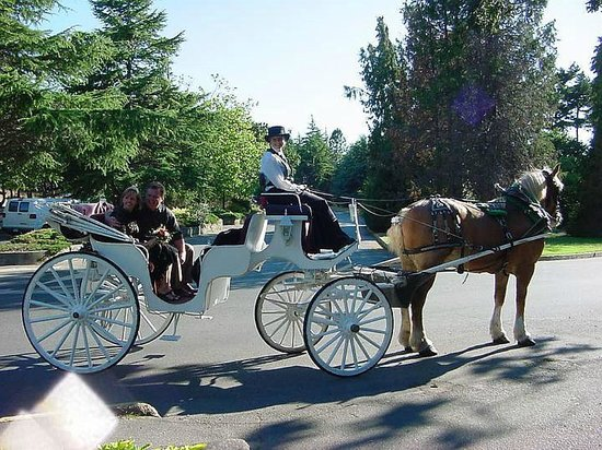 Coast Victoria Hotel & Marina by APA:                   Horse and carriage rides are for lovers, young and old.