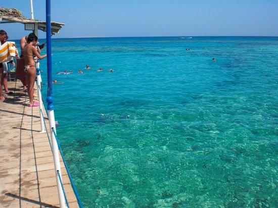 Coral Beach Resort : plage