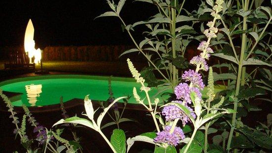 Agriturismo La Cantina di Bacco: piscina