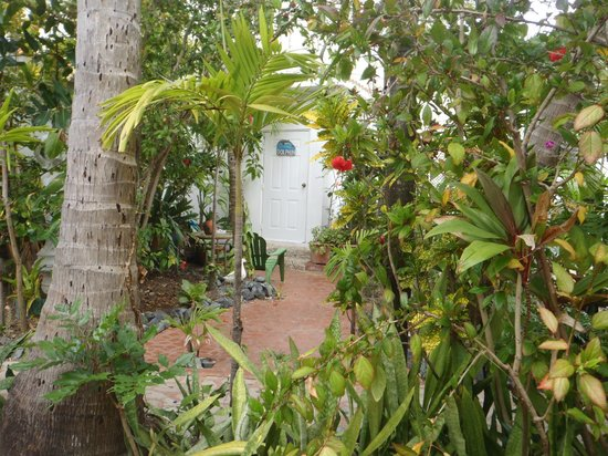 Coconut Palms Inn :                   Entrance to the Dolphin Room