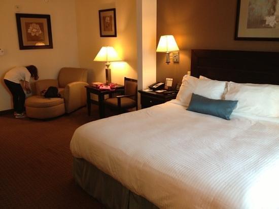 Holiday Inn Express & Suites Mobile West I-10:                   king bed standard room