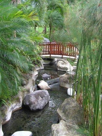 The Royal Corin Thermal Water Spa & Resort :                   Royal Corin Hotel Pool Area