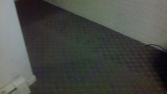 Cocca's Route 7 Airport:                   carpet old and dirty                 