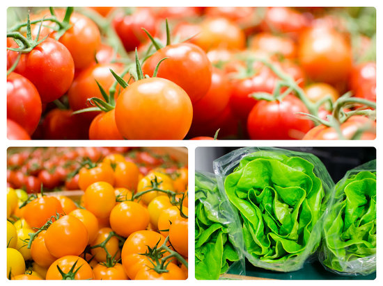 Old Strathcona Farmers' Market: Fresh greenhouse product year round!