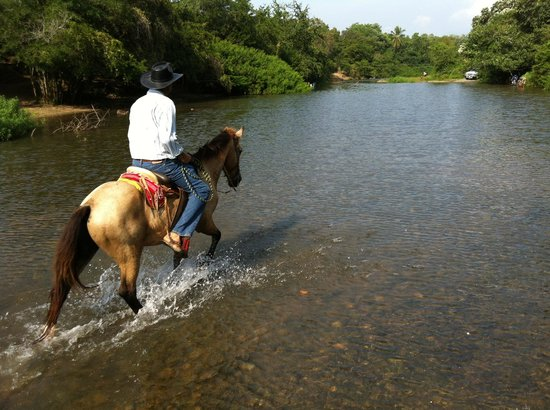 Present Moment Retreat:                                                                         Horseback riding with Je