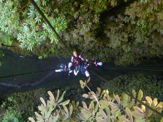 Waitomo Adventures:                   2