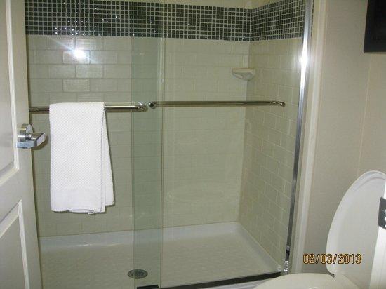 Staybridge Suites Houston IAH - Beltway 8:                   Walk in shower