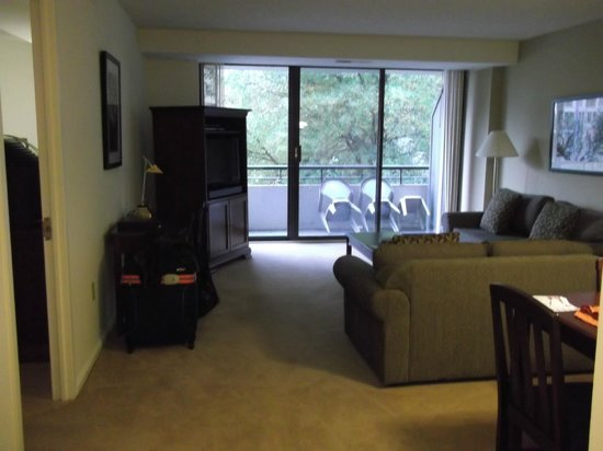 Oakwood Apartments Arlington:                   Living Room