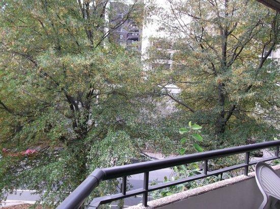 Oakwood Apartments Arlington:                   3rd Floor Balcony View