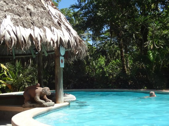 Encanta La Vida:                   Jungle Pool with swim up bar