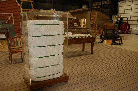 Bayer Museum of Agriculture:                   Cotton display