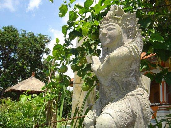 The Raja Singha Luxury Villas Resort:                                                       In the garden