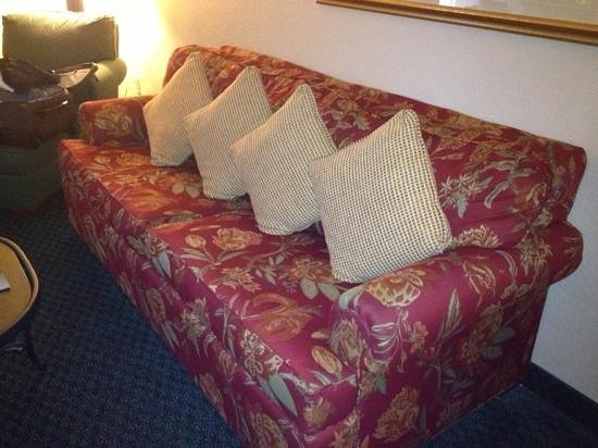 "Hilton Garden Inn Dallas / Market Center:                   This old dingy couch made it an ""upgraded room""."