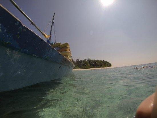 Angsana Ihuru:                   Snorkelling