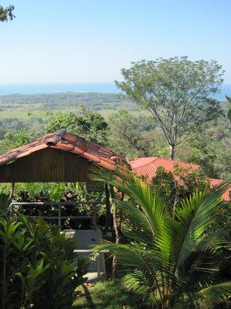 Vista Ballena Hotel:                   view of landscape & whale's tail