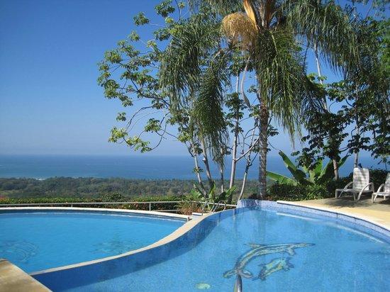 Vista Ballena Hotel:                   pool & view