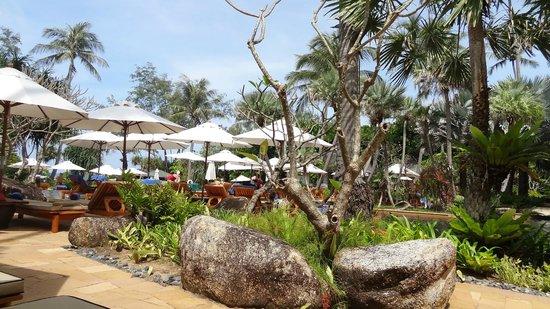 JW Marriott Phuket Resort & Spa:                   Beautiful grounds.