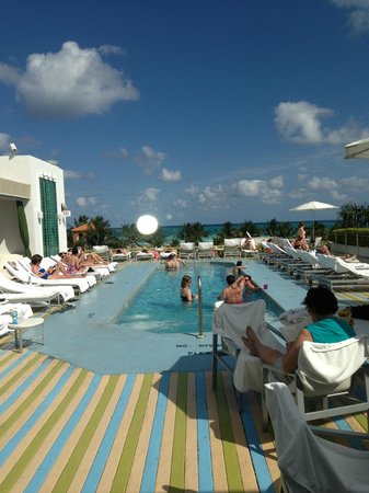 The Hotel of South Beach:                   pool/lounge area