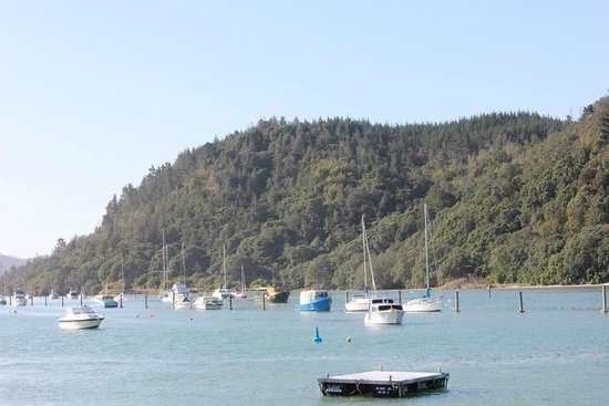 Whangamata Beach:                   harbour