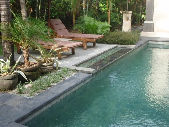 The Buah Bali Villas:                   Our Pool