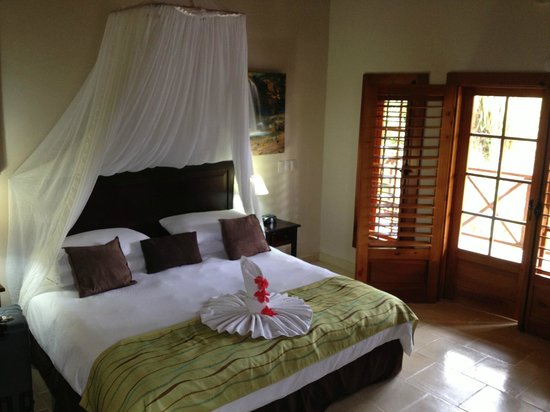 Falls Resort at Manuel Antonio:                   Room